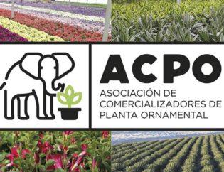 apco-association-orvifrusa