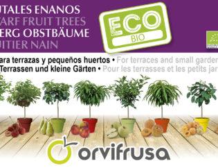frutal-enano-BIO-orvifrusa